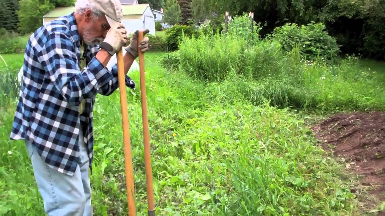 Cleaning An Overgrown Garden Bed Youtube