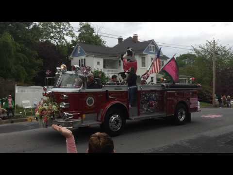 2017 Apple Blossom Festival Parade & Fireworks
