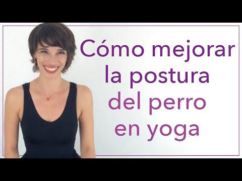 Cómo mejorar la postura del perro en yoga