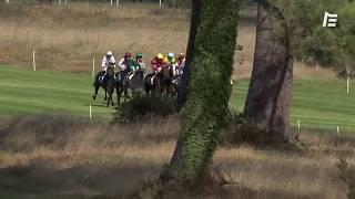 Vidéo de la course PMU PRIX DU CHATEAU GRANDIS