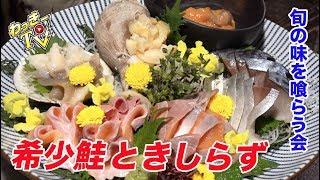 EVOL接骨院の動画→https://youtu.be/Q2vbxgy9dPM ◉わっきーTVオンライン...