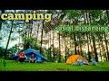 Camping Hujan Asmr Suara Hujan Dalam Tenda Suara Alam Pagi Hari Relax Melodies  Mp3 - Mp4 Download