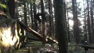 Janno Dropping in Lolas trail Seymour