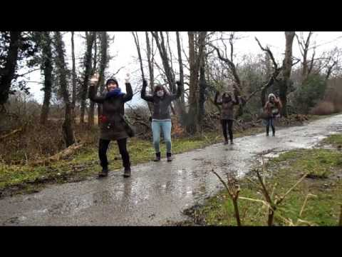 Dancing in Ireland - Ag damhsa in Éireann - 2014