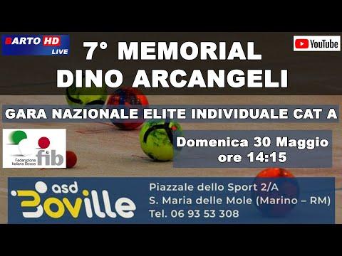 7° Memorial Dino