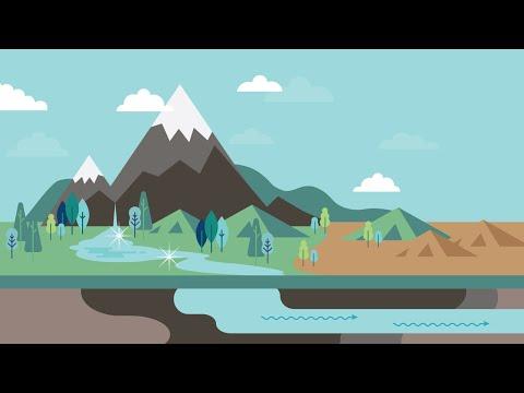 Water Fluoridation In Washington: Nature's Cavity Fighter!