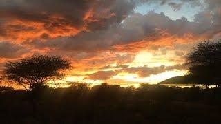 Namibia - Damaraland und Etosha Park 4x4