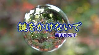 鍵をかけないで 宙玉物語【姫路植物園】西田佐知子.