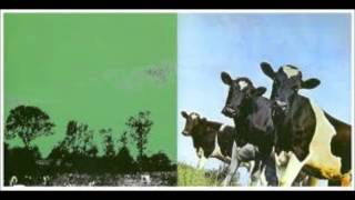 Pink Floyd LIVE ~ The Amazing Pudding ~ LIVE 1970