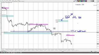 Форекс  Обучающее видео Опционный анализ для торговли на FOREX