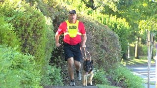 First Guide Dog Trained To Run With Blind Athlete