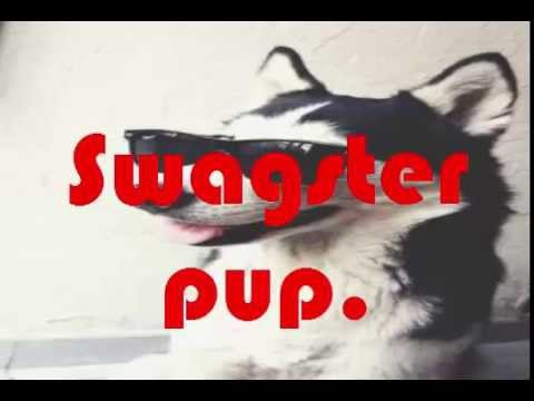Swagster Pup It Ain't Over Yet! Karaoke SHORT
