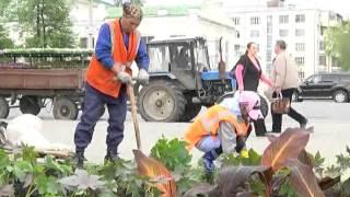 Высадка цветов у колледжа им. Ползунова(Начальник планового производственного учреждения МБУ