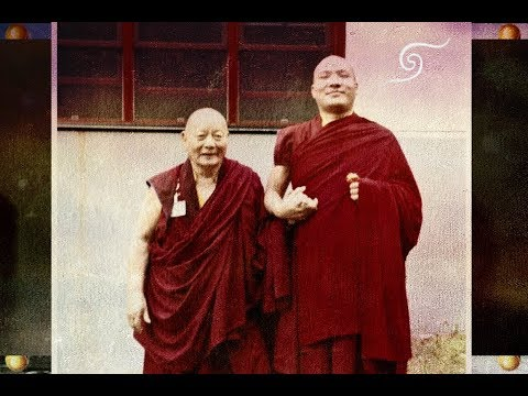 HH 17 Karmapa ཀརྨ་པ། KTD Birthday