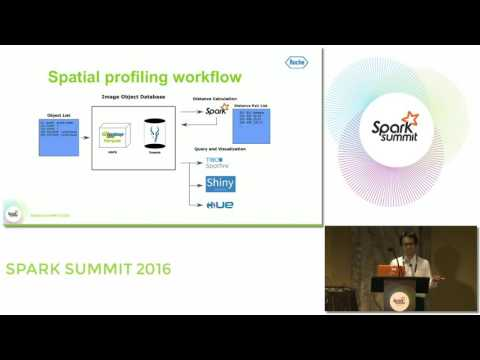 Spatial Analysis On Histological Images Using Spark