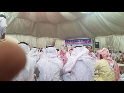 1st.National Champion of Kuwait in sheep breeding,arabian horses in Janów Podlaski janow.arabians.pl
