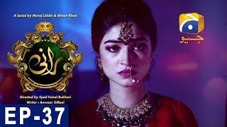 Rani - Episode 37 | Har Pal Geo