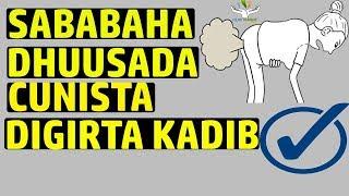 Maxaa Sababa dhuusada badan cunista digirta kadib | xogta science-ka