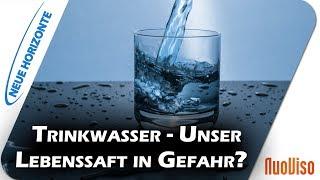 Trinkwasser - Unser Lebenssaft in Gefahr? - Erich Meidert