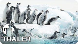 Die Reise der Pinguine 2 Trailer Deutsch German (2017)