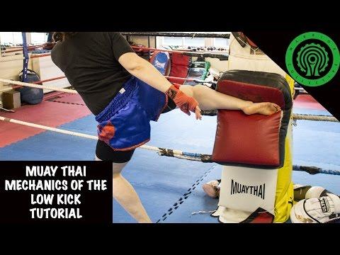 Muay Thai Mechanics of the Low Kick Tutorial