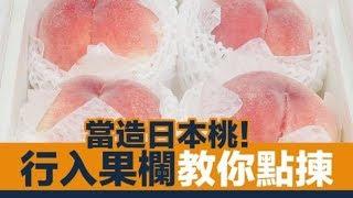 日本水蜜桃當造!果欄達人教你揀桃 +桃市價格情報|新假期