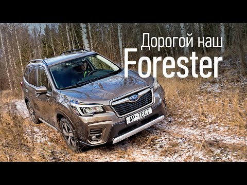 Новый Subaru Forester — за что два с половиной миллиона?