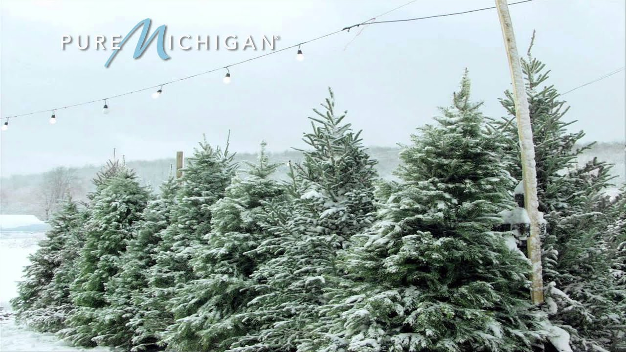 Michigan Christmas Tree Association | Pure Michigan - YouTube
