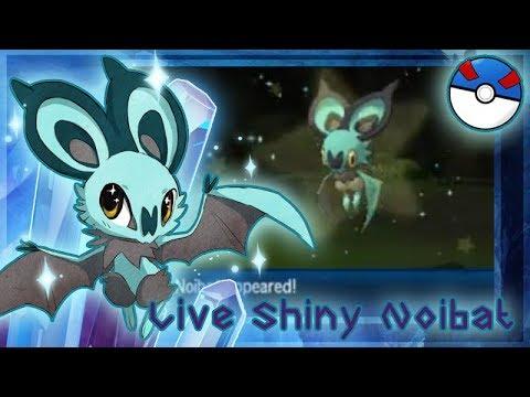 Pokemon Ultra Sun ~ Live!!! Shiny Noibat