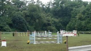 ogier sukces - ZO Moszna 2011 - runda koni 6-letnich