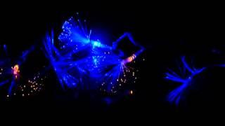 Гирлянда светодиодная нити 100 LED(Светодиодные гирлянды имеют ряд преимуществ: - более чистый и яркий свет - не мерцают и не утомляют зрение..., 2013-11-14T17:29:01.000Z)