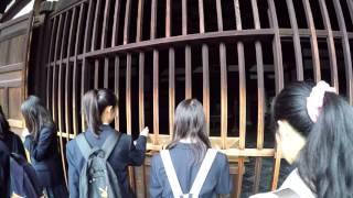 Kyoto, Japan - GoPro & Feiyu G4 Gimbal - Eikando & Tofukuji