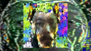 Does Your Dog Need Prozac? - MC Necrolapdancer