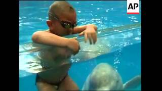 4-yo swims with beluga whale, latest extreme feat by child athlete