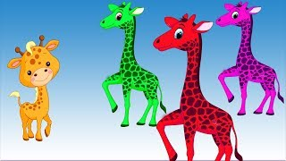 Learn Colors With Wild Animals Baby Find Mom ❤ Wow Toddlers ❤ Learn Names and Sounds Animals For Kid