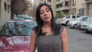 42 preguntas a la ley 20 000 de drogas Chile Cannabis libre