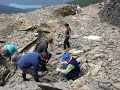 A visit to the Burgess Shale (Middle Cambrian)