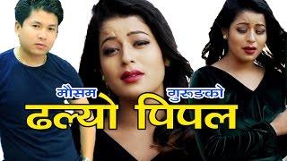 यो गीत सुनेर नरुने कमै होलान||Dhalyo Pipal||Mousam Gurung||Laxmi Bhujel|| ft Sanchita Thakuree 2073