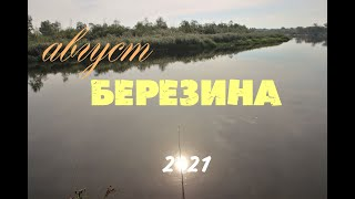Ловим на БЕРЕЗИНЕ в конце августа