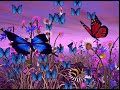 Beautiful, romantic, cartoon, butterfly, flower,photography&video background