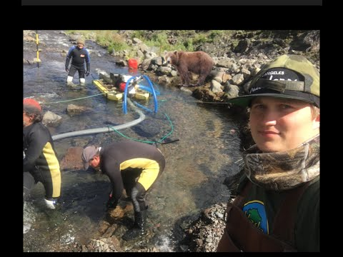 Alaska: Gold Prospecting 2016