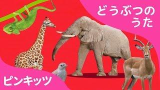 ABCどうぶつきしゃ | ABC Animal Train | どうぶつのうた | ピンキッツ童謡