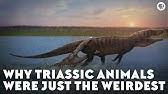 Why Triassic Animals Were Just the Weirdest