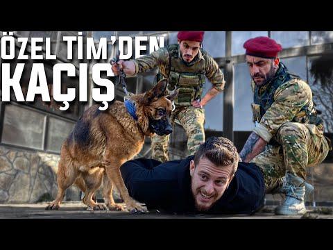 KAÇIŞ 3! (TERK EDİLMİŞ OKULDA ÖZEL TİM'DEN KAÇAN KAZANIR!)