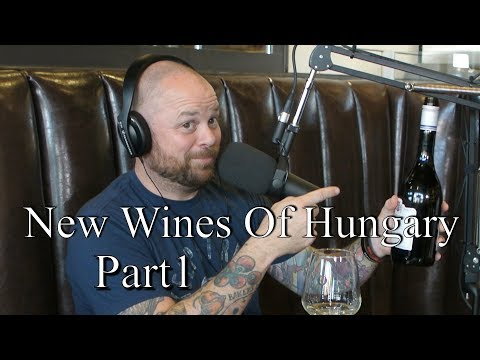 New Wines Of Hungary Part. Tasting and breaking down Hungarian Wine Business