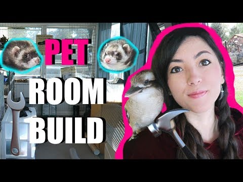 BUILD A Pet Room With Me!! | Epic DIY | Building My Animal Studio (Pet Room)
