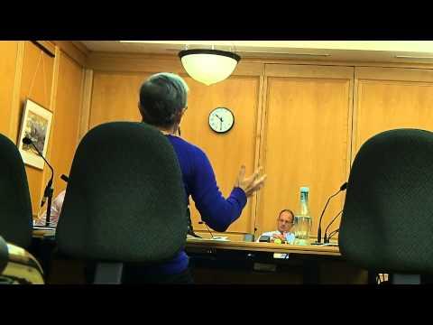 NZ Select Committee hearing 30/4/2015. Professor Jane Kelsey
