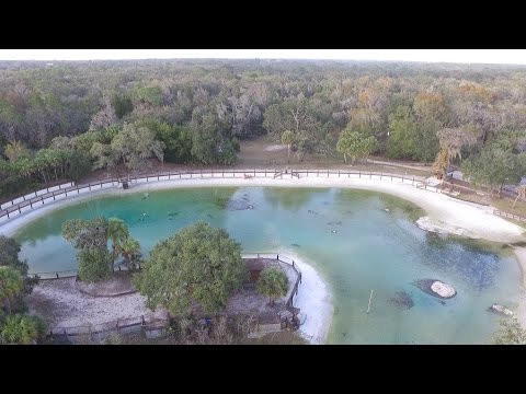 Lithia Springs Park, FL - Awesome Aerial Views - 4k
