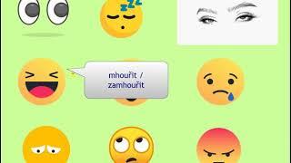 Изучение чешского языка - Видеоурок VS17