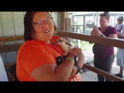 Special Memories Zoo Petting Zoo Greenville, WI 7-28-19